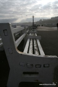 Benches on the Pier