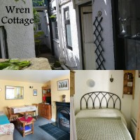 Whitby Wren Cottage